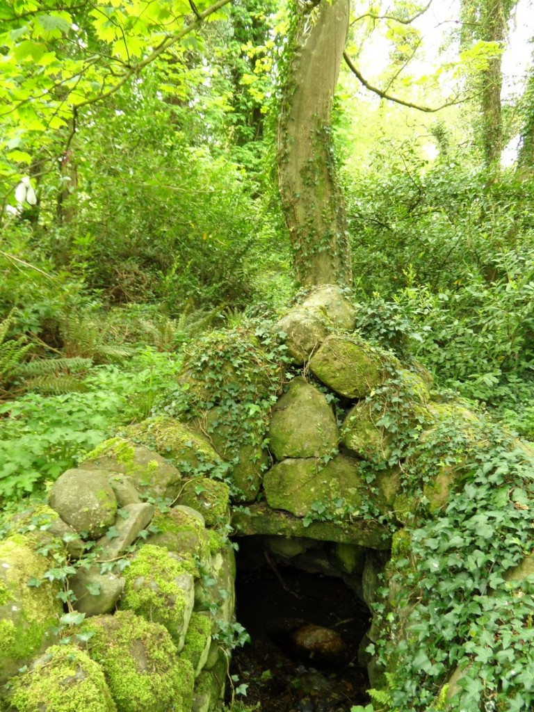 St. Mobhis Well